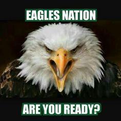 Super Bowl 52 here we come, Fly Eagles Fly! Eagles Memes, Eagles Team, Eagles Nfl, Philadelphia Eagles Cheerleaders, Philadelphia Eagles Super Bowl, Philadelphia Sports, Football Memes, Football Team, Sports Memes