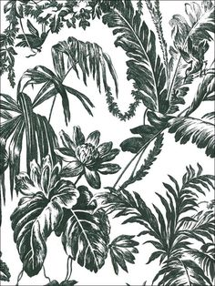 black and white tropical print Textile Pattern Design, Textile Patterns, Print Patterns, Floral Patterns, Pattern Ideas, Textiles, Tropical Wallpaper, Go Wallpaper, Fabric Wallpaper
