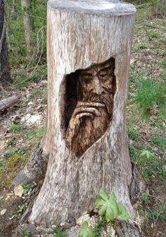 Tree carving - Stumped.