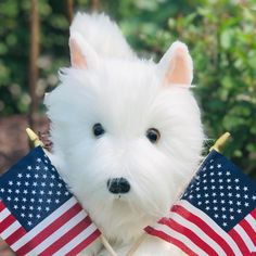 Happy Fourth of July from Auswella Plush®️#plush #plush #plushies #plushtoys #plushanimals #stuffedanimal Happy Fourth Of July, Plush Animals, Plushies, Pet Toys, Felt Stuffed Animals, Stuffed Animals, Softies