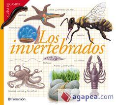 Los Invertebrados / [textos: Josep M. Barres Manuel]. Abril 2015