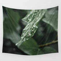 drops Wall Tapestry #tapestry #walltapestry #homedecor #photography #drops