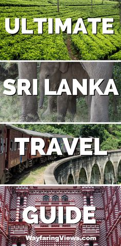 Plan your perfect trip to Sri Lanka with this complete travel guide. Get itinerary suggestions, travel tips and links to detailed resources. #srilanka #travelblog | Places to visit in Sri Lanka | Wildlife in Sri Lanka | Temples | Sri Lanka itinerary map | Kandy | Sigiyra | Ella | Colombo | Sri Lanka train