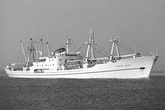 Ship Tracker, Rotterdam, Sailing Ships, Boats, Nautical, The Past, Sea, Sewing, Gallery