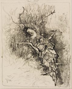 Stump by Jan Mankes Dutch Painters, Landscape Drawings, Etchings, Museum Of Modern Art, Western Art, Printmaking, Sydney, Moose Art, Aqua