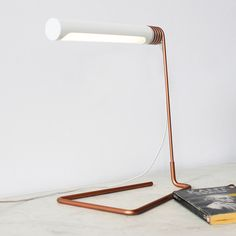 Kei Ng  Brian Richer; Copper and Enameled Aluminum 'Coil Lamp', 2013.
