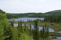 Petit lac damé par les castors