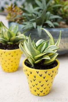 Don't leave the kids out of the Casa Watkins Living pineapple theme week! Check out these simple and fun 17 DIY pineapple crafts for kids and teens! Painted Plant Pots, Painted Flower Pots, Painted Pebbles, Decorated Flower Pots, Cheap Planters, Pineapple Flowers, Cactus Flower, Pineapple Craft, Flower Bookey
