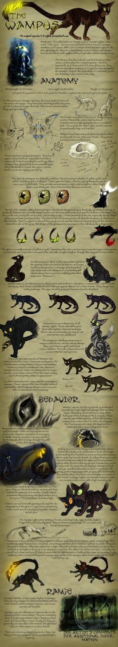 Species Sheet - The Wampus by Kaylink.deviantart.com on @DeviantArt
