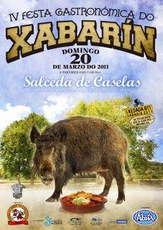 Ezequiel Alonso Valcárcel: Cartel 4ª Festa do Xabarín - Salceda de Caselas 2011