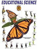 Educational Science Kits - Monarch Rearing and Breeding Kits Product Description