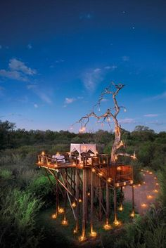 Treehouse ~ Chalkley Treehouse, Lion Sands Private Game Reserve, South Africa
