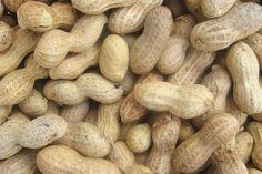 Go Nuts for Feeding Birds Peanuts!: Raw Peanuts