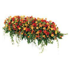 Dessus de cercueil classique composé de germinis, rose, celosies, astromeria, hypericum, liane lierre, cocos, mini oeillet. #deuil #condoleances