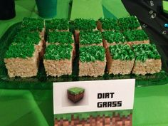 Let's make your child's Minecraft Birthday Party incredible and unforgettable!