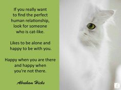 #AbrahamHicks #Relationships #Cat