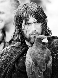 The knight-scout Tristan, played by Mads Mikkelsen, with his pet hawk in Jerry Bruckheimer's King Arthur Mads Mikkelsen, King Arthur Movie, Roi Arthur, Clive Owen, Hugh Dancy, Keira Knightley, Character Inspiration, Beautiful Men, Fairy Tales