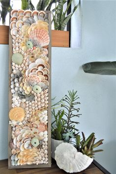 Seashell Projects, Driftwood Crafts, Seashell Art, Seashell Crafts, Coastal Wall Art, Coastal Decor, Modern Coastal, Shell Decorations, Sea Crafts