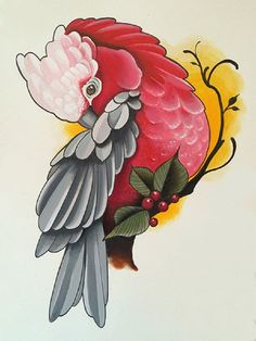 Pink Cockatoo by Candy Cane Tropical Bird Artwork Canvas Art Print –…