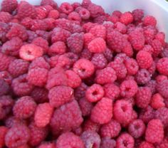Lots of raspberries