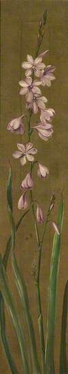 A Species of Watsonia by Marianne North; Oil on canvas; Your Paintings, Landscape Paintings, Marianne North, Art Uk, Trees And Shrubs, Botanical Gardens, Oil On Canvas, Gallery, Image