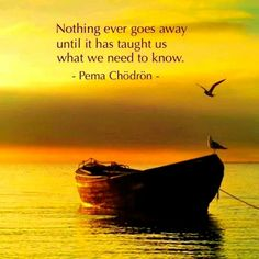 Nothing ever goes away until it has taught us what we need to know. ~Pema Chodron