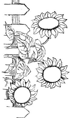 Flower Coloring Pages - 4