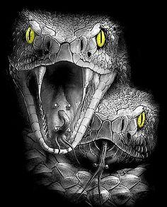 Escorpion Tattoo, Money Tattoo, Head Tattoos, Sleeve Tattoos, Tatoos, Reptiles, Realistic Tattoo Sleeve, Snake Drawing, Owl Head