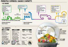 Lo spreco alimentare ha assunto, e sta sempre più assumendo, una dimensione di portata mondiale, tanto che metà del cibo prodotto nel mondo non arriva mai ad essere consumato. http://www.mondoallarovescia.com/spreco-alimentare-cause-e-proposte/