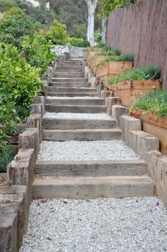 Solving draingage issues with a new staircase and built-in container gardens. Beautiful, simple, practical.