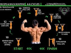 BodyWeight BACK  BICEPS Workout [Calisthenics Routine]