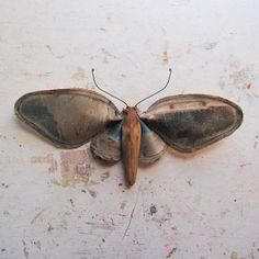 Moth made from vintage oil painting of a by MisterFinch on Etsy, £29.00