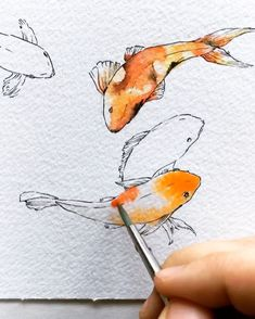 "Koi fish are the domesticated variety of common carp. Actually, the word ""koi"" comes from the Japanese word that means ""carp"". Outdoor koi ponds are relaxing. Art Inspo, Kunst Inspo, Fish Drawings, Art Drawings, Koy Fish Drawing, Art Koi, Koi Kunst, Coy Fish, Koi Fish Pond"