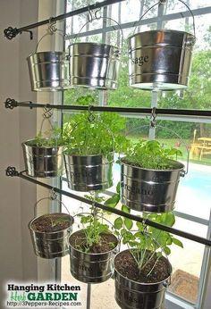 herb kitchen hanging garden rods, container gardening, gardening, kitchen design