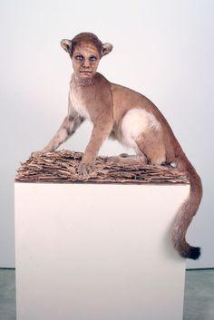 Brooklyn artist Kate Clark has created these super bizarre animal sculptures.