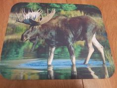 Perfect gift for dad!  FREE shipping!   Moose Mouse Pad - Standing Tall