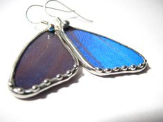 Real Blue Morpho Butterfly Jewelry.