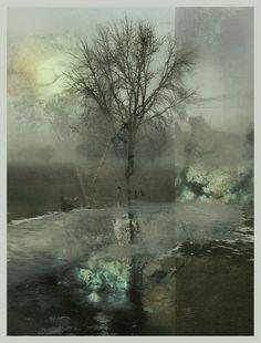 iPhoneography, February Sun, Armin Mersmann