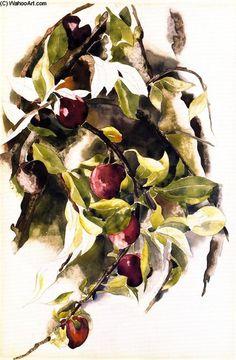"""Prunes"", aquarelle de Charles Demuth (1883-1935, United States) Watercolor Artists, Watercolor Flowers, Watercolor Paintings, Watercolors, Gouache Painting, Painting & Drawing, Charles Demuth, New Artists, Oeuvre D'art"