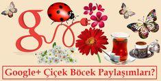 Google+ Çiçek Böcek Paylaşımları +1 Çok Almasının Nedeni Go Google, Table Decorations, Blog, Blogging, Dinner Table Decorations