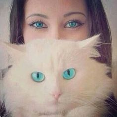 #Ojos cristalinos