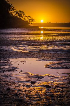 "thejelliedfish: """"French Bay Sunrises"" D.Fodie - Retrospective *Snapshots taken on the very rare occasions when I was able to force myself out of bed earlier enough! Nature Photography, Travel Photography, Sun And Stars, Nature Photos, Travel Style, Summertime, Landscape, World, Beach"