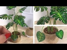 DIY Miniature Monstera Plant (And Basket Planter) - YouTube