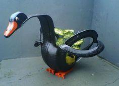 Cisne-negro  (Foto: Reprodução/ Arquivo Pessoal)