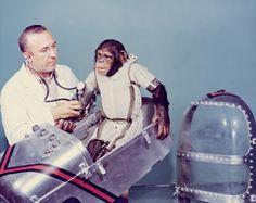 En 1946 comenzaron los experimentos con animales en el espacio para comprobar su supervivencia antes de probar vuelos...