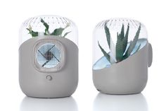 The idea is simple enough: Plants naturally filter toxins. So the design has a fan that silently sucks up air, and forces that air over a houseplant's leaves and soils. Pollution-free air then circulates through the room.  The designer, Mathieu Lehanneur, won a rack of awards for the concept.