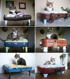 Wilson would love this -- Love Nostalgic Whimsy kitty beds from Etsy