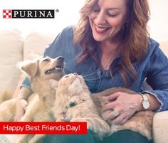 HAPPY BEST FRIENDS DAY! Share pictures of your best friends today and please tag us! . . . . . . #PurinaPartner @purina #purina #bestfriend #bestfriends #bff #cat #cats #dog #dogs #catsofinstagram #dogsofinsta #dogsofinstagram #love #cute #cutie #adopt #adoptdontshop #rescue #animal #pet #florida #humanesociety #broward #fortlauderdale #miami #dogmom #catlady #positivevibes