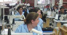 Beneficia a más de 230 mil personas Seguro de Desempleo