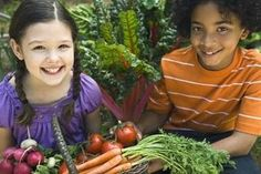 LiveWell Program Brings Healthy Dining to Kids' Menus Vegetable Garden Planters, Garden Planter Boxes, Food Safety Tips, Food Tips, Keeping Healthy, Healthy Eating, Healthy Food, Clean Eating, Healthy Environment